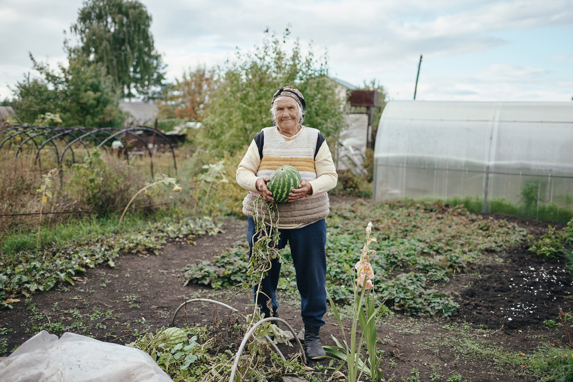 Alexandra Nikolaevna, 83. For people at retirement age, dacha is a habit and a great way to get busy, and to grow crops to eat during the winter. A recent increase of a retirement age in Russia will likely increase the importance of the grown food for dachnikis.
